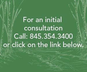 consultation coupon