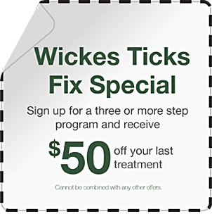 Wickes_Ticks_Fix-Special